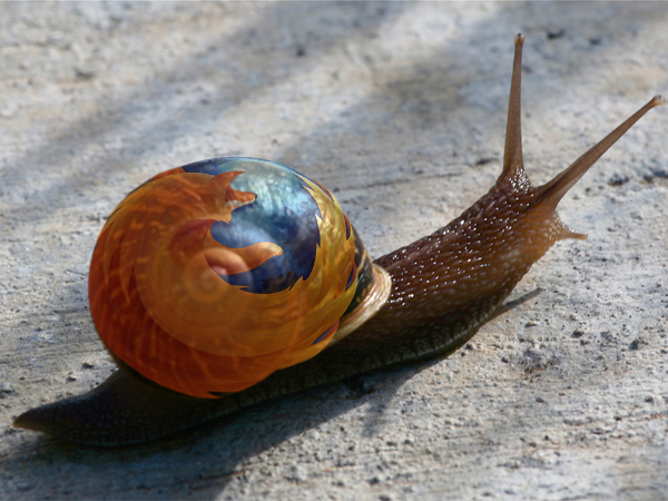 slow-snail